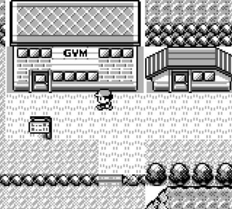 Pokemon games Gym guide